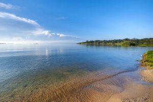 lake victoria entebbe uganda