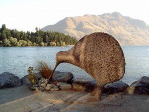 new zealand giant kiwi