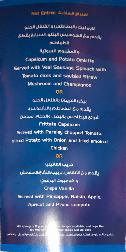 Bewertung EgyptAir Business Class A330 BKK CAI Menu 7