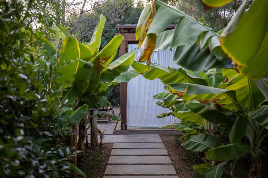 Cretan Malia Park Resort Yoga 2