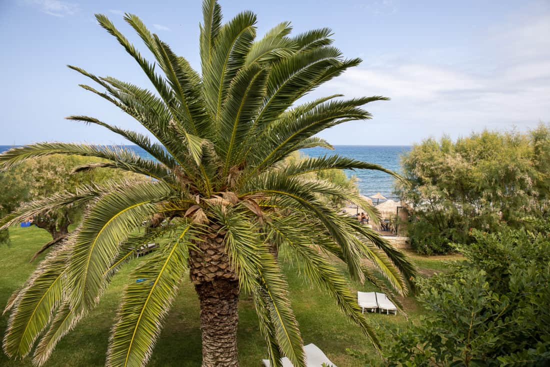 Cretan Malia Park Resort Zimmer Sea View Ausblick