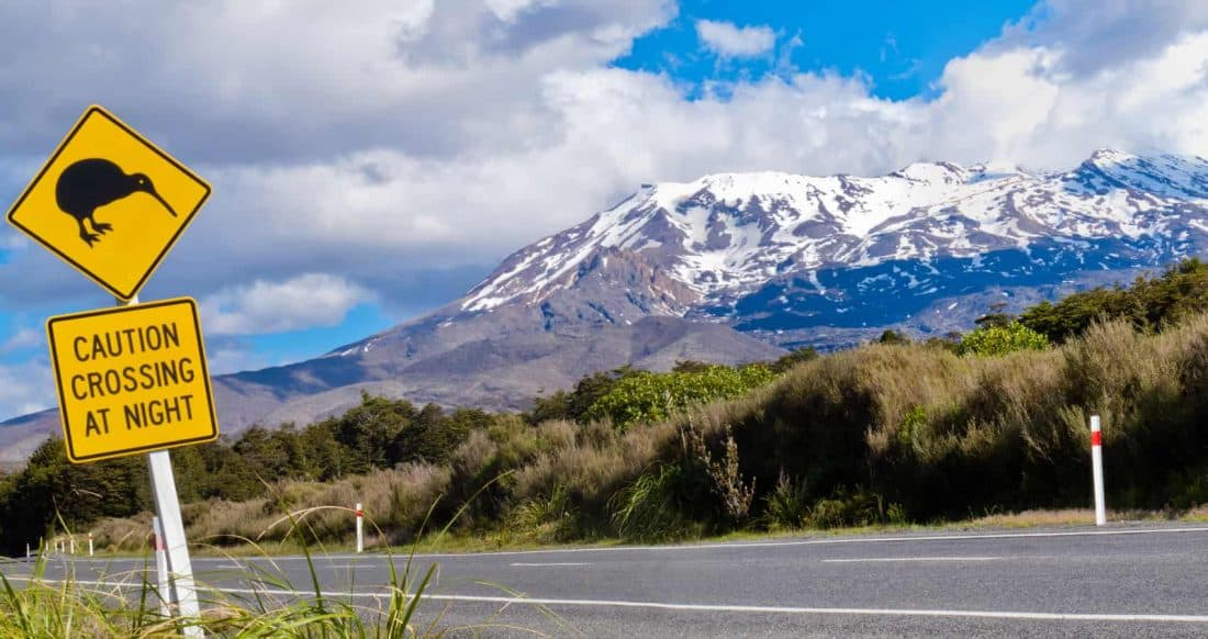 Kiwi Crossing Neuseeland