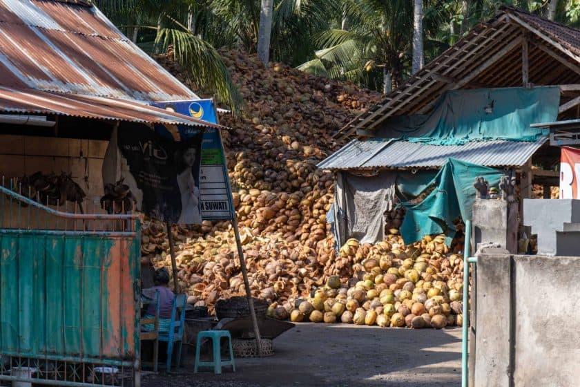 Kokusnüsse Bali