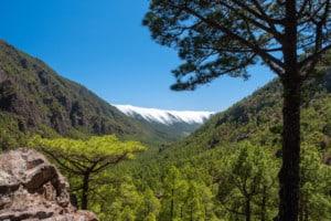 La Palma Kanaren cropped