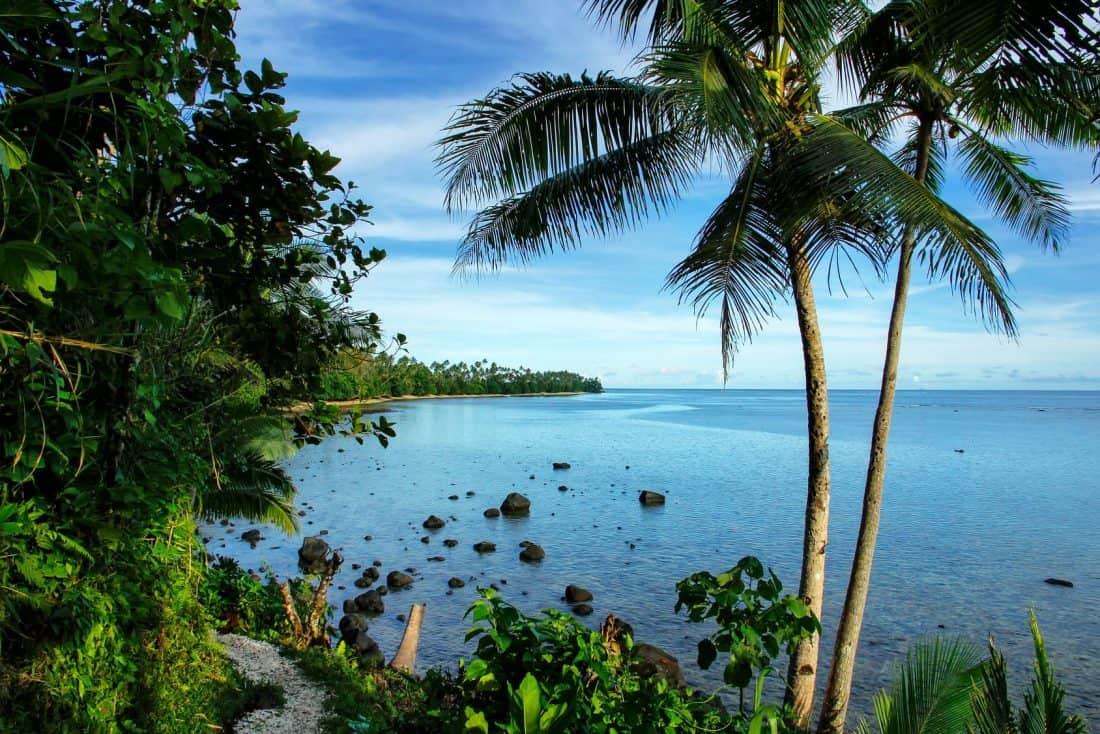 Lavena Costal Walk auf Taveuni Island, Fischi