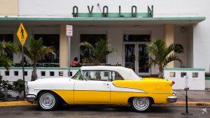 Hotel Avalon Miami Beach