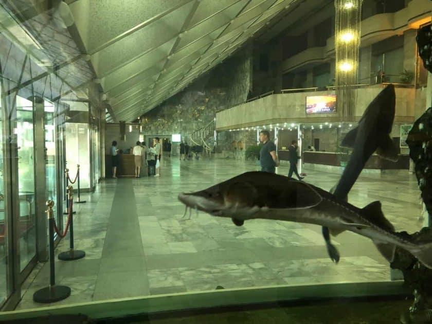 Nordkorea Museum
