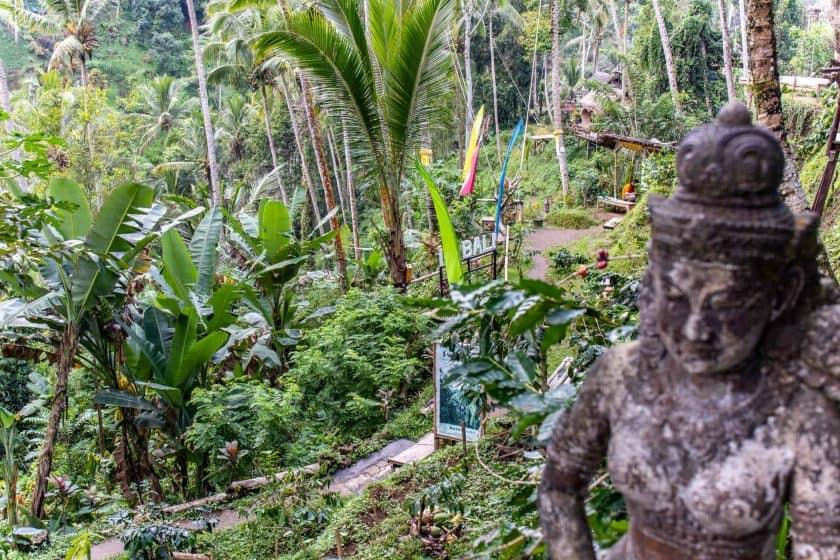 Reisterrassen Tegalalang Bali 3