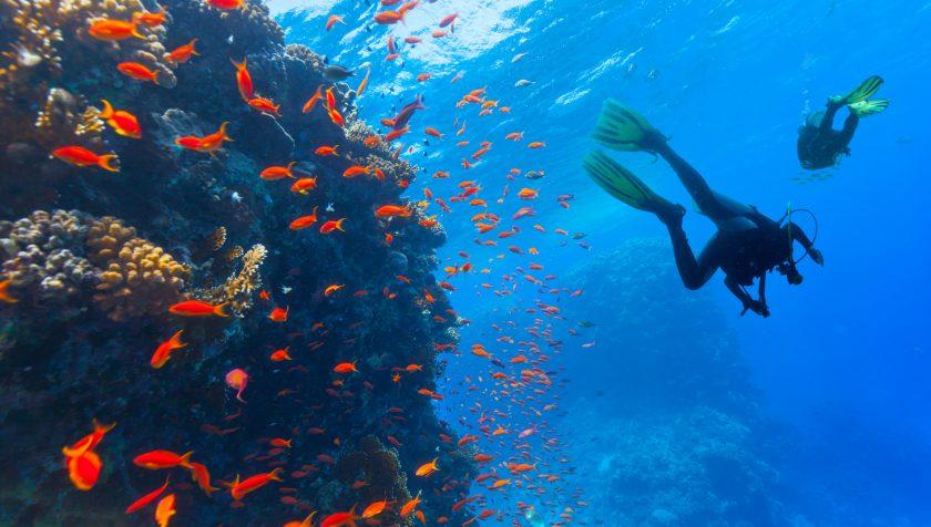 Tauchen Mittelmeer, Ägypten