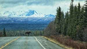 Alcan Highway Yukon Kanada
