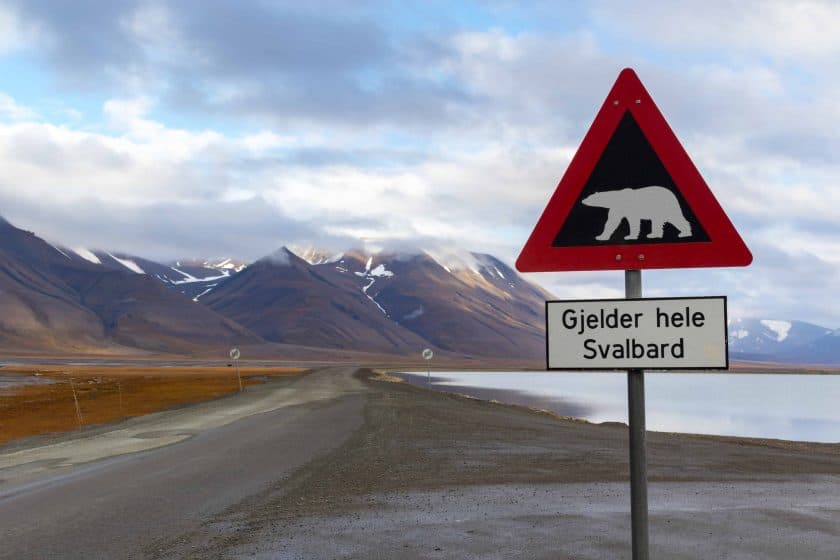 Eisbär Schild Spitzbergen Svalbard